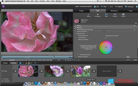 צילום מסך Adobe Premiere Elements Windows 8.1