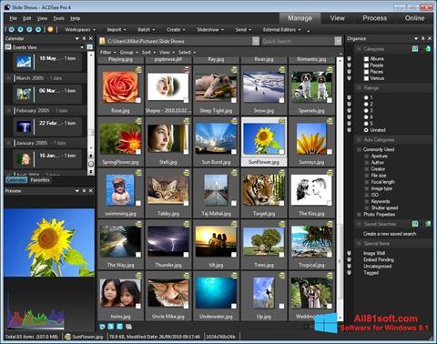 צילום מסך ACDSee Windows 8.1