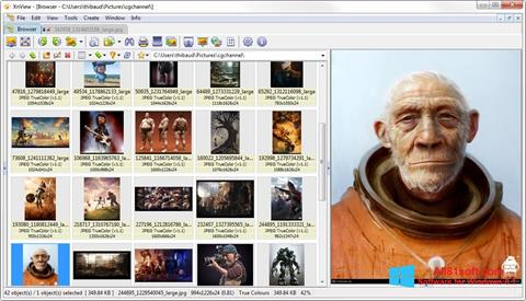 צילום מסך XnView Windows 8.1