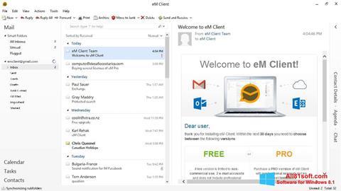 צילום מסך eM Client Windows 8.1