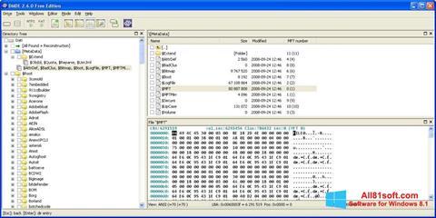 צילום מסך DMDE Windows 8.1