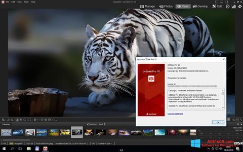 צילום מסך ACDSee Pro Windows 8.1