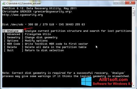 צילום מסך TestDisk Windows 8.1
