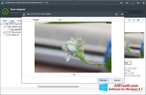 צילום מסך USB Flash Drive Recovery Windows 8.1