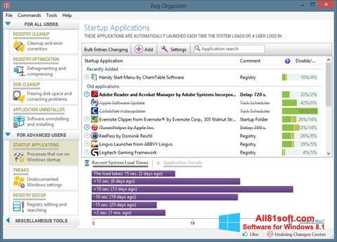 צילום מסך Reg Organizer Windows 8.1