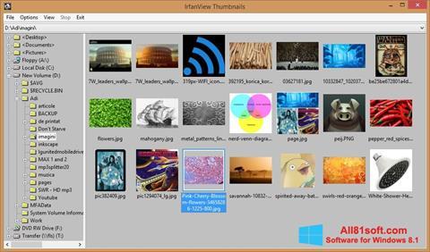 צילום מסך IrfanView Windows 8.1