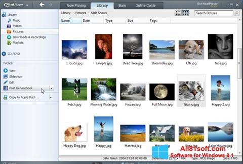 צילום מסך RealPlayer Windows 8.1
